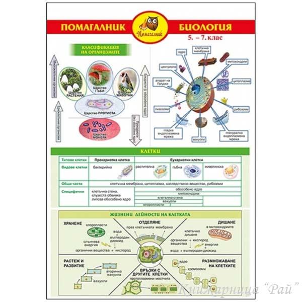 Помагалник по биология за 5., 6. и 7. клас - Домино